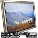 Canvas-gallery-wrap-in-float-frame-TPTPro.com