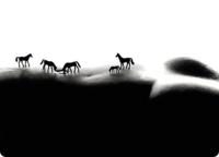 Horses_opt