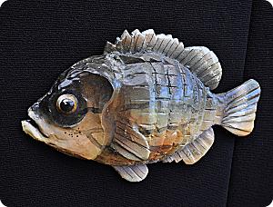 Sunfish_opt