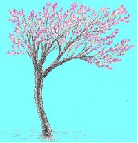 Redbud Artisan Market tree only_opt