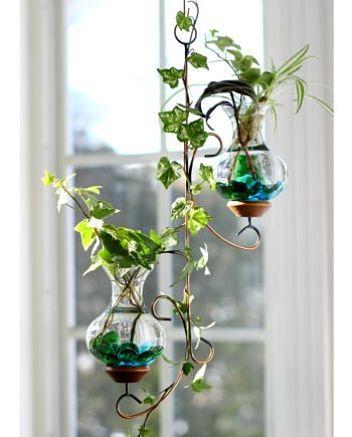 Hanging Garden_opt